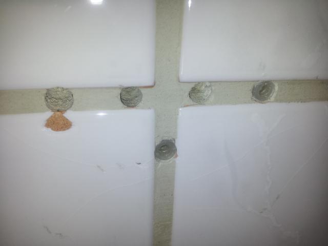 Fliesenfugen reparieren
